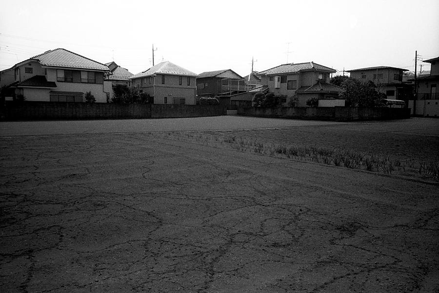 作品201234