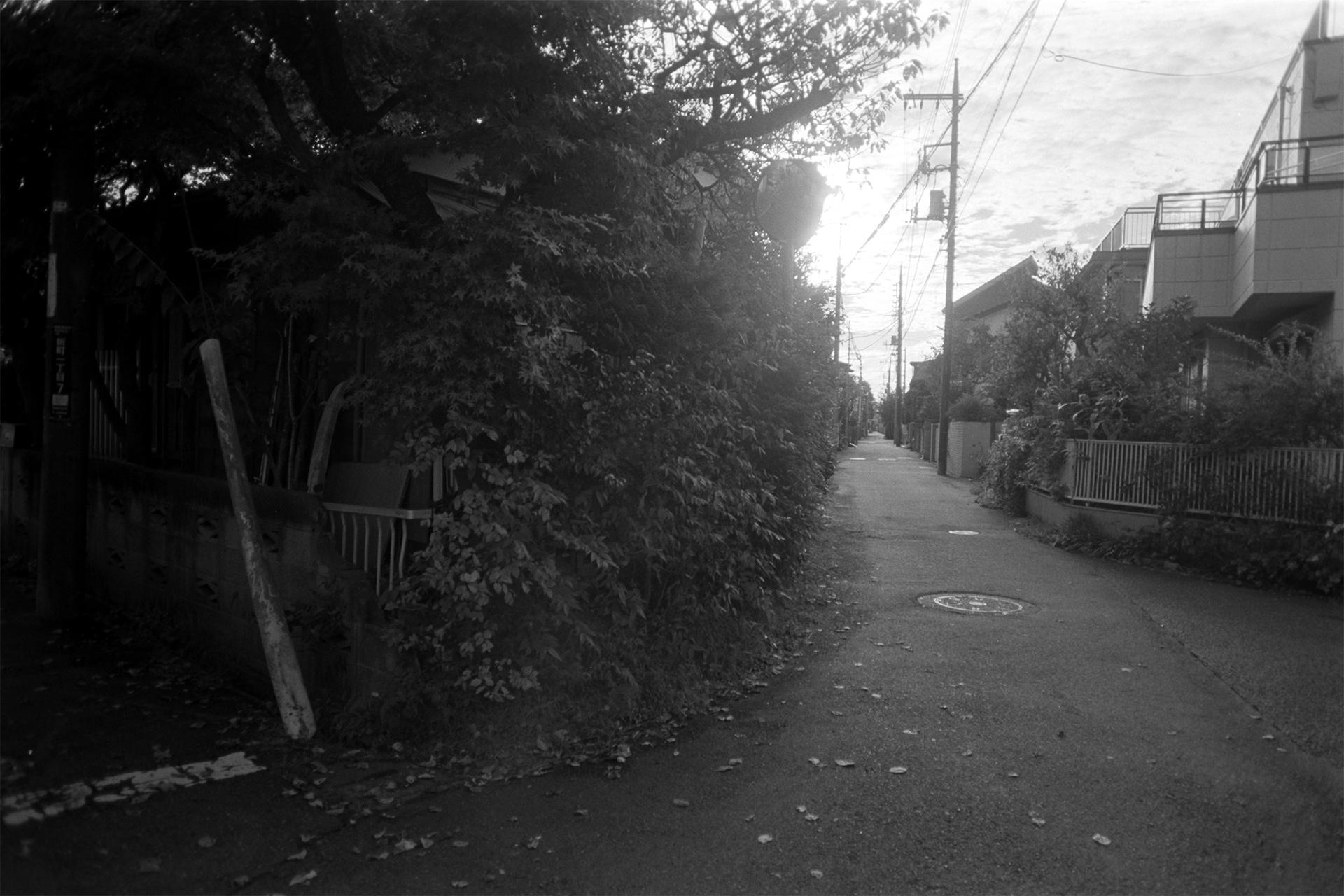 作品-201914-