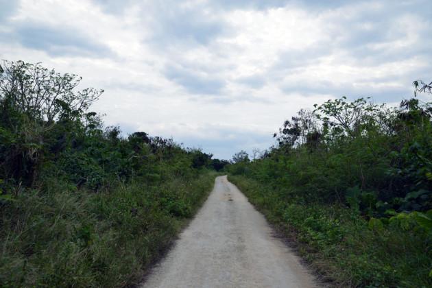 アイヤル浜に向かう道