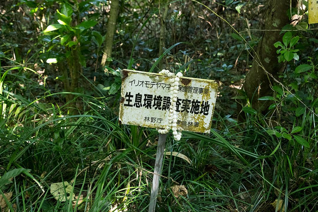 生息環境調査実施地の看板