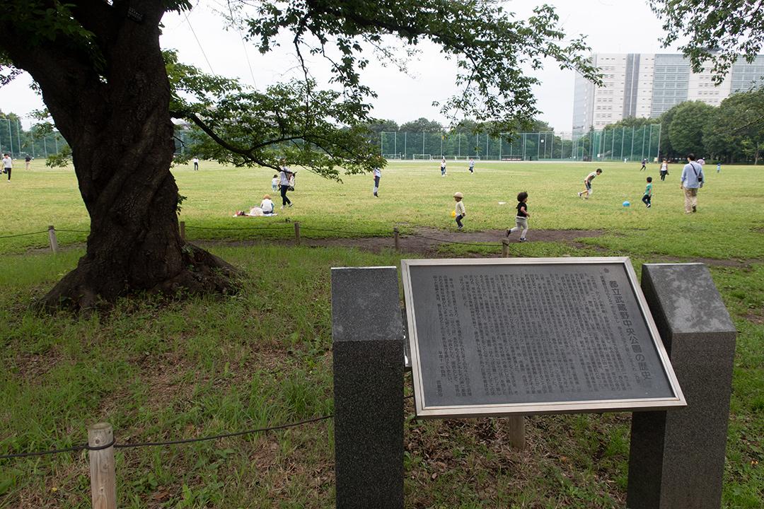 現在の武蔵野中央公園