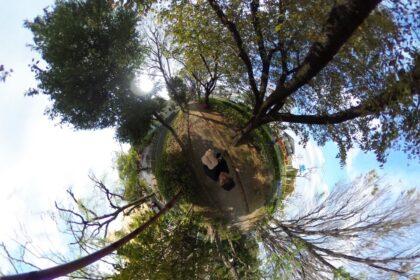 武蔵野の小径
