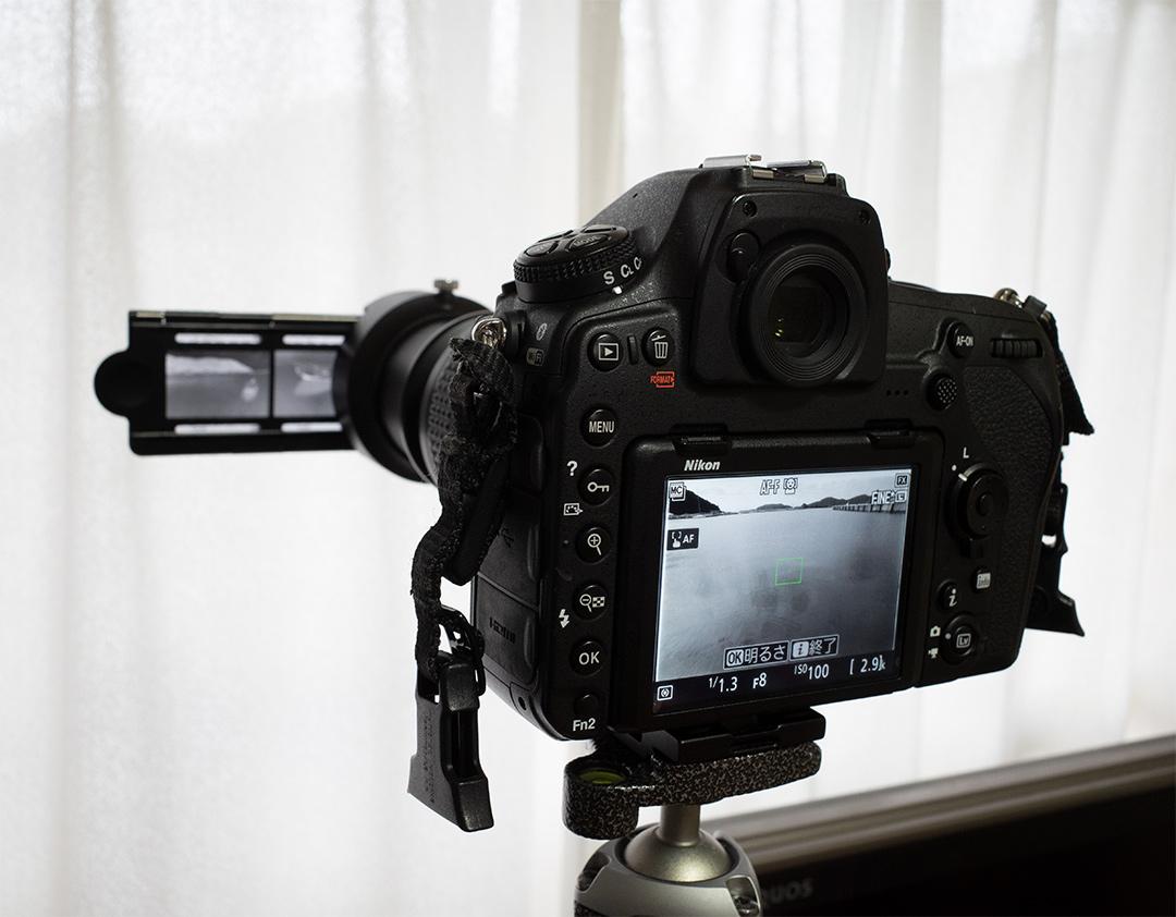 D850でフィルムをデジタイズ